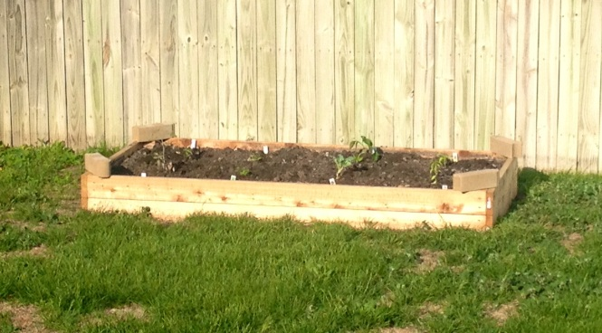 Our Raised Garden Bed